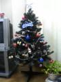 20051223-tree.jpg