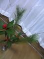 20060101-flower2.jpg