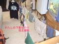 20060130-5cleaning.jpg
